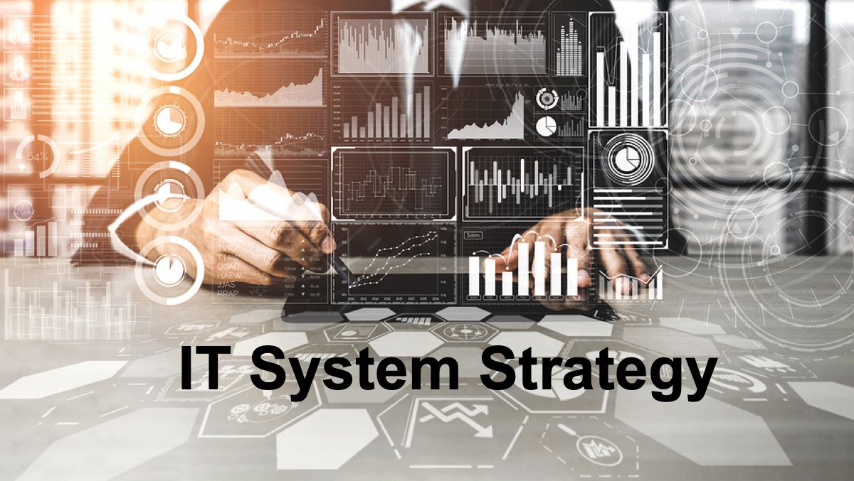 IT-System-Strategy